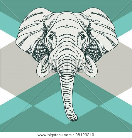 Vector hand drawn illustration with elephant head.