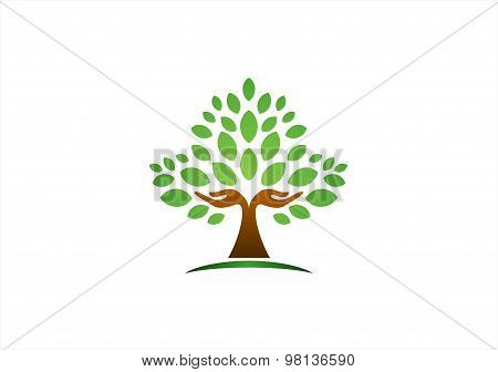 tree hand logo,hand tree nature wellness health symbol icon vector design