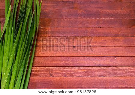 Raindrops On Iris Leaf  On A Wooden With Copy Space