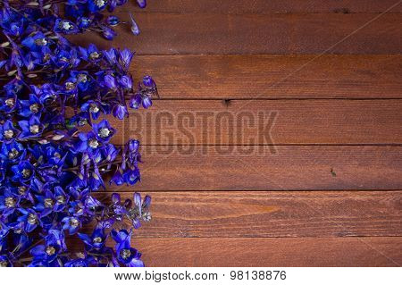 Purple Foxglove Flowers  On A Wooden With Copy Space