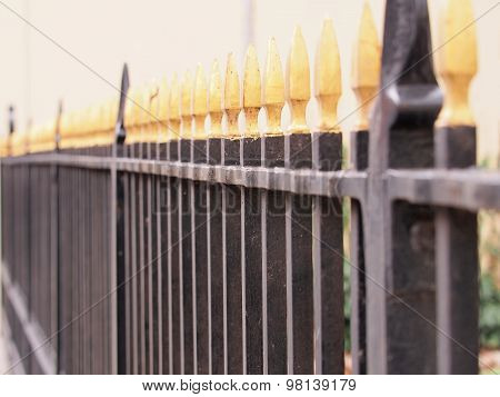 Iron fence black with golden tips