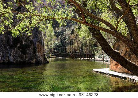 Lake in the spring park.