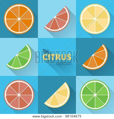 Flat Icons Of Citrus