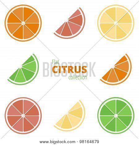 Flat Icons Of Citrus