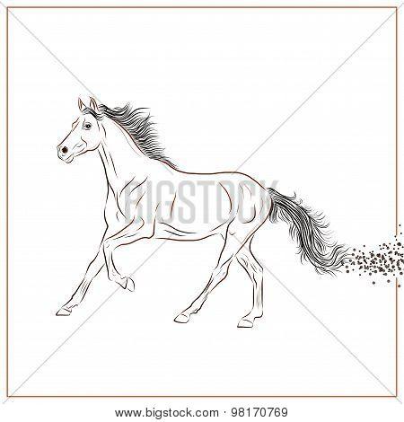 Running Horse - Illustration