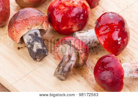 Fresh Rosy Russula Fungi On Wooden Plate