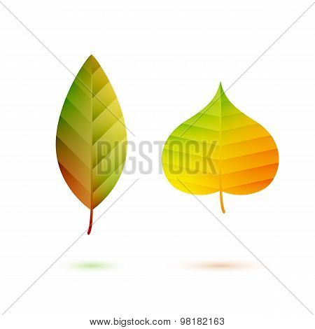 Colorful leaves symbol logo fall autumn design.