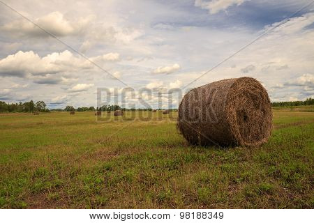 the bale of hay