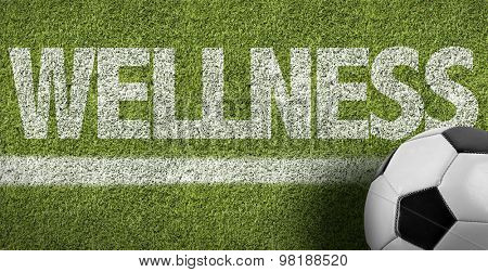 Soccer field with the text: Wellness