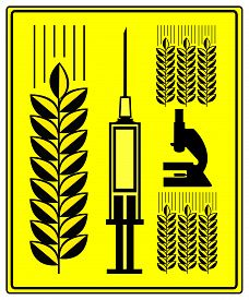 pic of modification  - Concept sign for grain with genetic modification - JPG