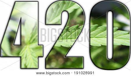 Cannabis 420 Logo