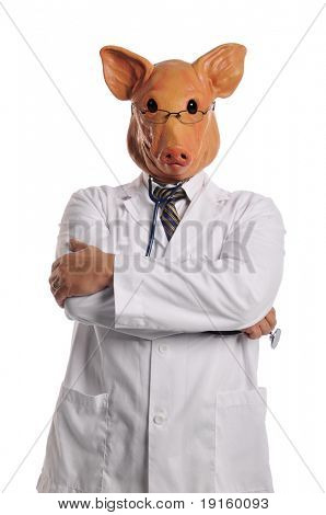 Swine Flu metaphor showing a doctor with pig's head isolated on white