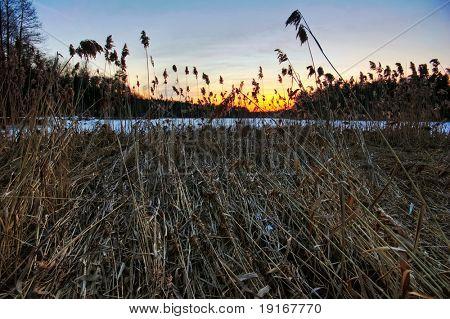 Sunset around  lake at early spring