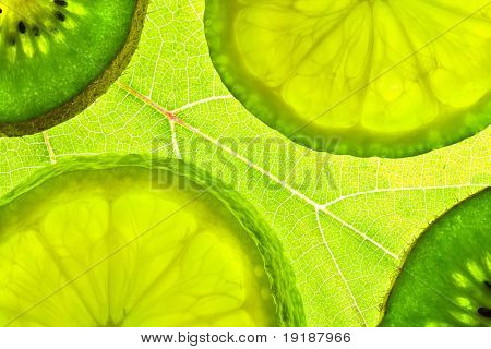 slices citrus on green natural background