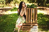Woman In Colorful Maxi Dress With Box With Apples In A Sunny Gar poster