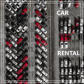 Word Auto Rental Over Many Cars From Above. poster