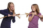 stock photo of shaky  - Two girls fighting over a rope isolated on a white background - JPG