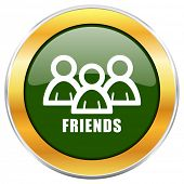 Friends green glossy round icon with golden chrome metallic border isolated on white background for