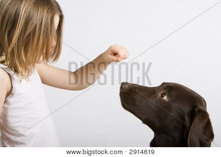 Young Girl Training Dog