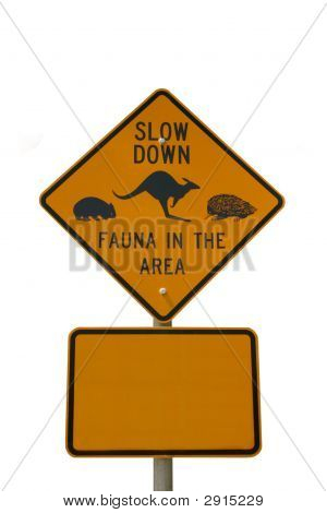 Slow Down Fauna Sign Isolated On White