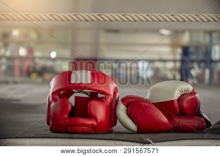 Boxing Headquard And Leather Mitt