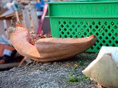 Pumpkin Wedge At Veg Market poster