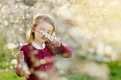 Adorable Little Girl In Blooming Cherry Tree Garden On Beautiful Spring Day poster