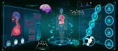 Medical Infographic Hud. Health And Healthcare Icons And Structure Of Human Organs. Medical Infograp poster