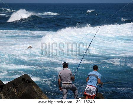 Fishermen In Puerto De La Cruz