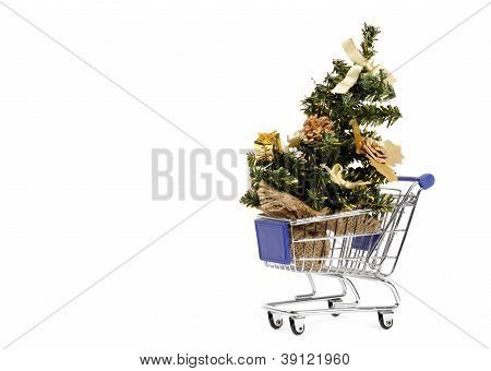 Shopping for Christmas tree