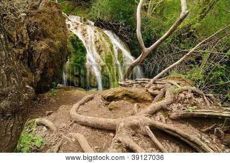 Beautiful river and waterfall in the forest