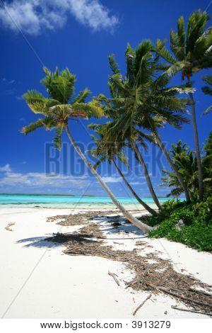 Beach Of Aitutaki, Beautiful South Pacific