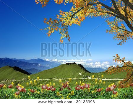 Amazing mountain with red leaf