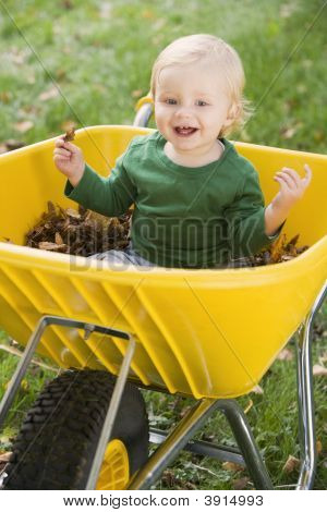 Baby In Wheelbarrow Of Leaves
