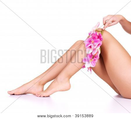 Beauty Female Slim Legs
