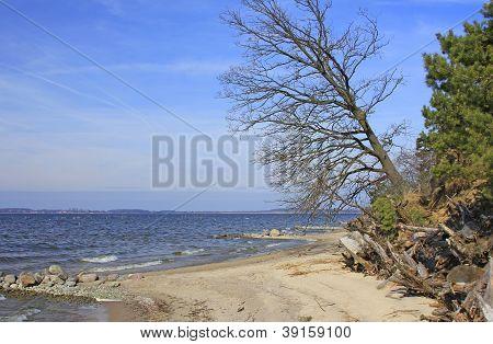 Landscape on the Baltic Sea