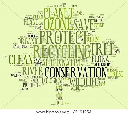 Ecological Related Keywords Info-text Graphic And Arrangement