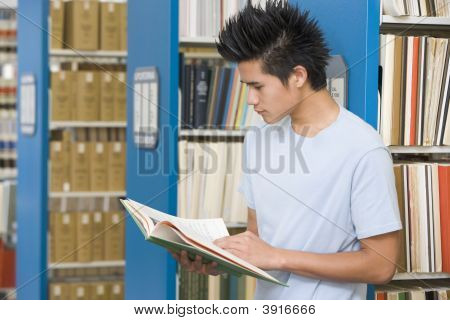 Man In Library Reading Book (Depth Of Field)