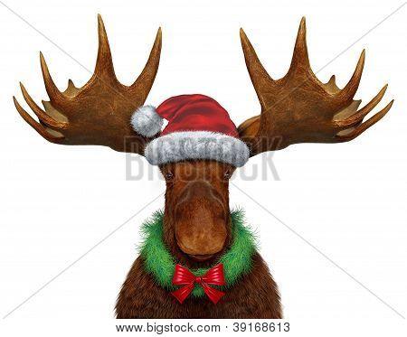 Alces de Navidad