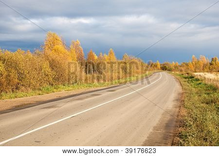 Dirt Paved Road In The Russian North. Autumn Forest.