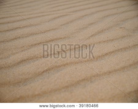 Sand Ripples Macro Background