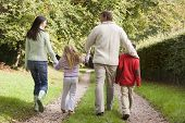 pic of tweeny  - Family outdoors walking on path holding hands  - JPG