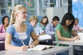 stock photo of hair integrations  - Students studying in geography class - JPG