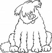 image of newfoundland puppy  - Cartoon Illustration of Funny Purebred Newfoundland Dog or Labrador Doodle or Briard for Coloring Book - JPG