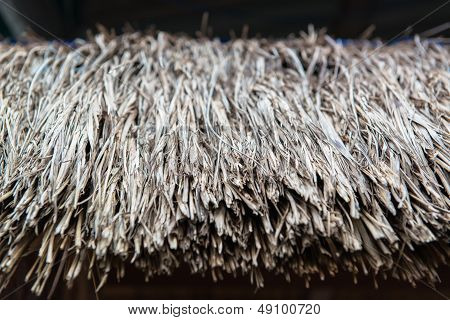 texture of thatch roof