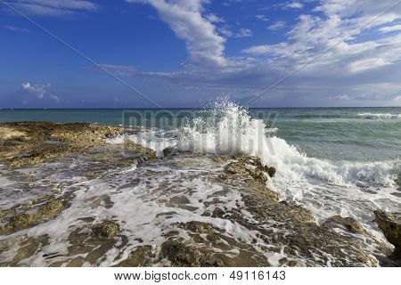 Waves Carsh Along The Rocky Jamaican Shoreline