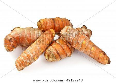 Fresh Turmeric or Curcuma Rhizome