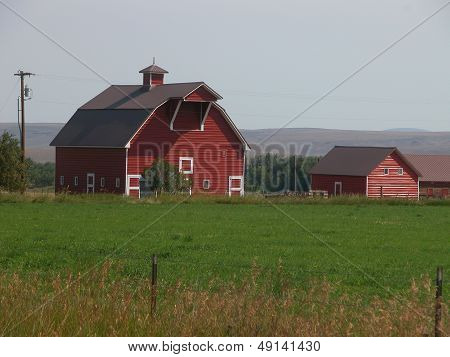 Red Barn on Oregon Farm