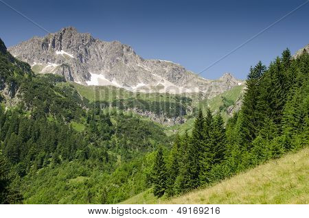 Mountain With Rocks And Firs