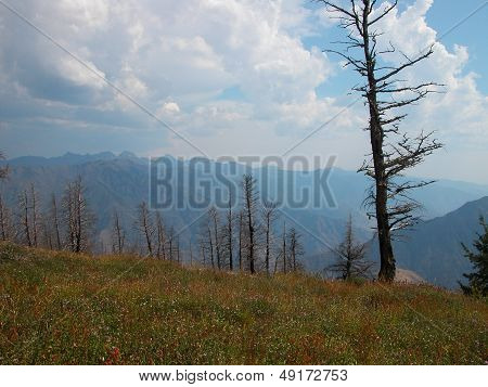Seven Devils Mts - Idaho